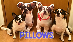 Pillows Banner
