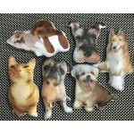 Customized Dogs Cats Pets Personalized Portrait Plush Key Chain Key Holder Ring