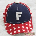Pets Dogs Cats Hip Hop Stars Baseball Cap Hat