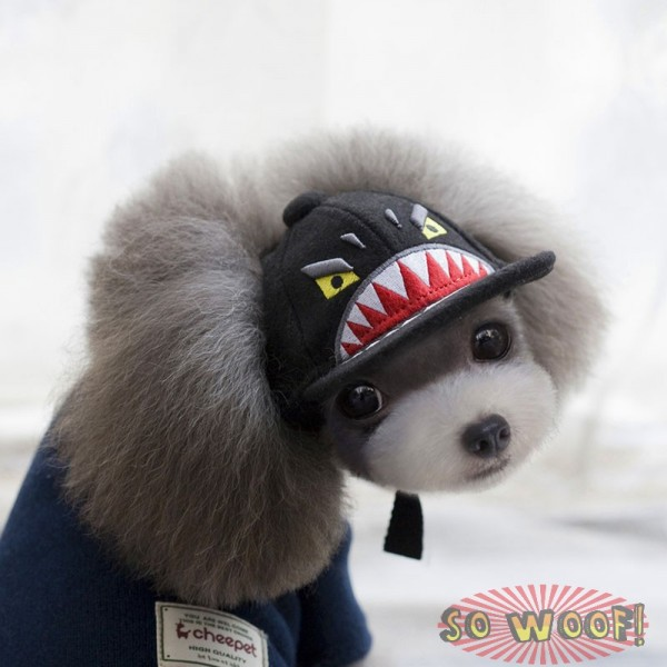 Pets Dogs Cats Hip Hop Black Fierce Shark Baseball Cap Hat