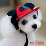 Pets Dogs Cats Hip Hop Red Mouse Ear M Baseball Cap Hat