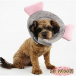 Pets Dogs Cats Elephant Cow Frog Crab Catepillar Collar Cone of Shame Elizabethan Cone