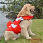 Pets Dogs Cats Swim Suit Life Jacket Orange Fish Style