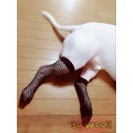 Dogs Super Funny Black Fishnet Net Stockings