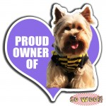 Proud Owner of Pets Dogs Cats Personalized Bumper Window Sticker with Photos Portrait