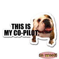 This Is My Co-Pilot Pet Dogs Cats Personalized Bumper Window Sticker with Photos Portrait