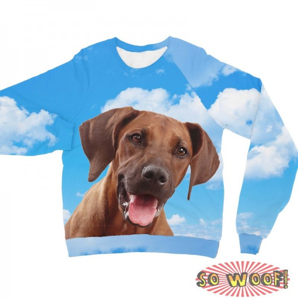 Pets Dogs Cats Blue Sky Portrait Customized Long Sleeves Unisex Fleece Sweatshirt