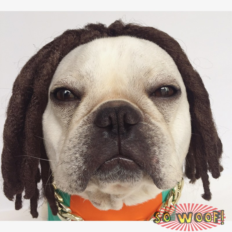 Pets Dogs Cats Reggae Braids Dreadlock Hair Wig for Photoshoot Funny Cute  Costume 2f48e558a